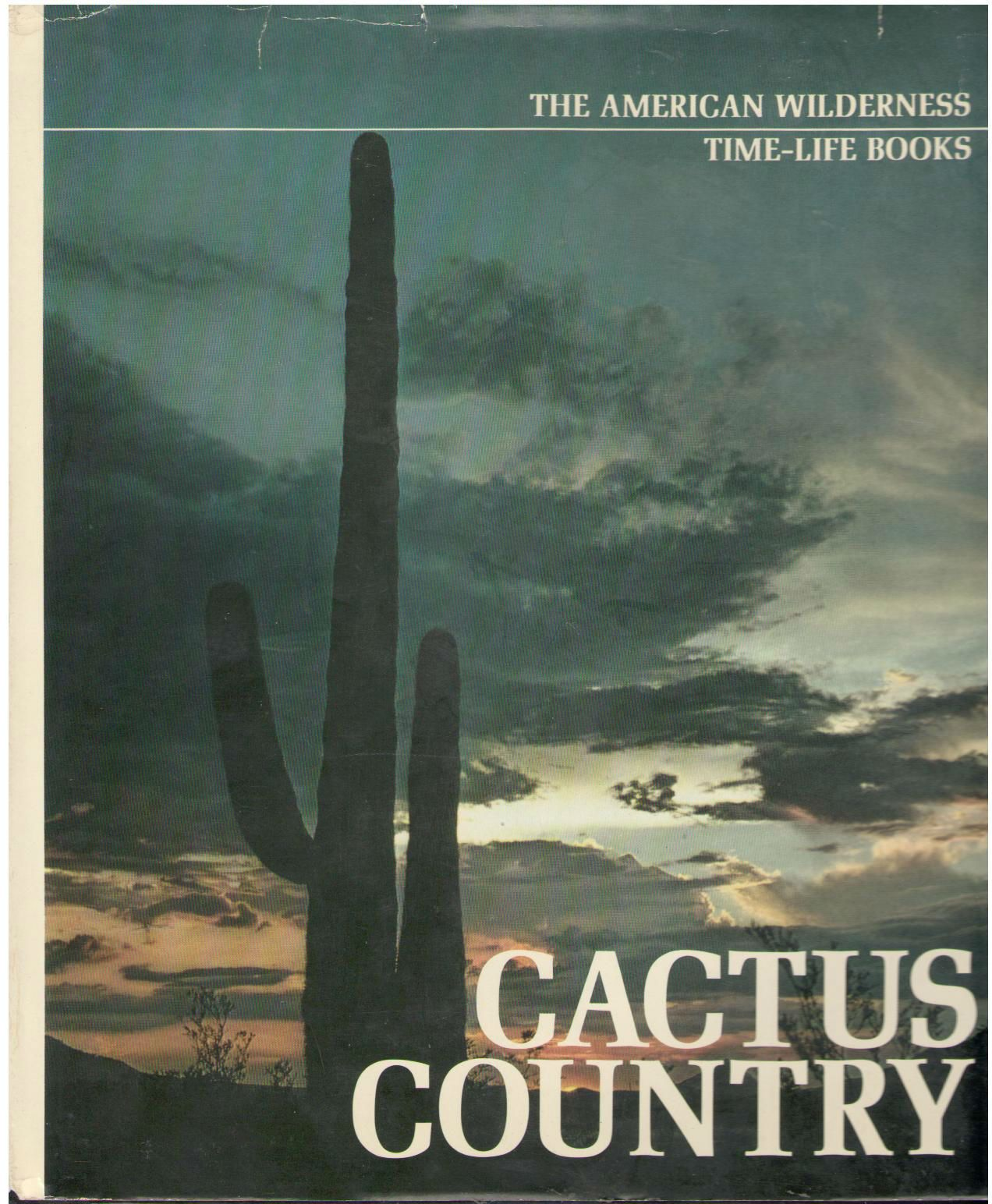 Cactus Country, Abbey, Edward